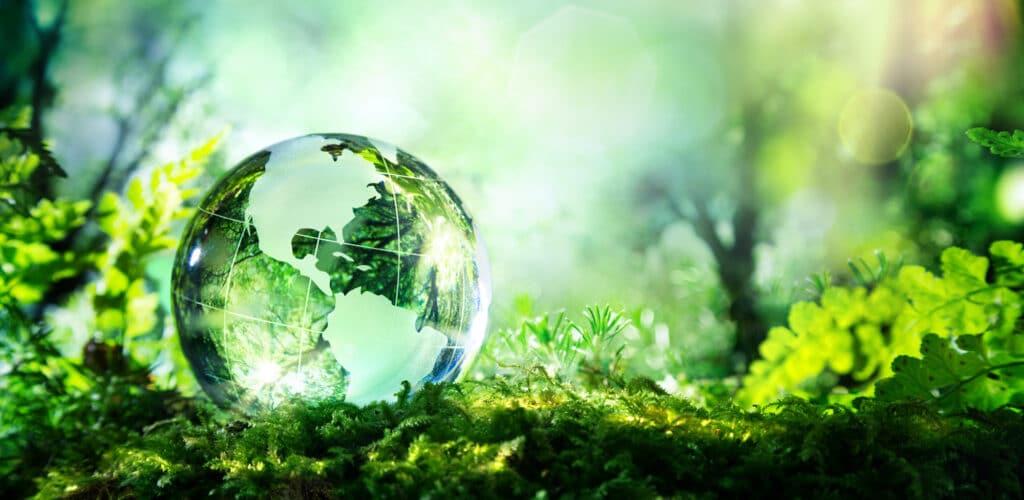 Snart är det dags för att sammanställa den årliga miljörapporten
